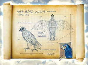 The blueprints used to build the new bird