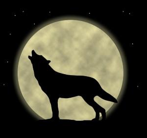 howlingwolf3-300x281