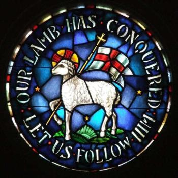 JC-Lamb