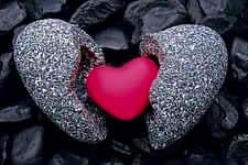 Heart of Stone Heart of Flesh