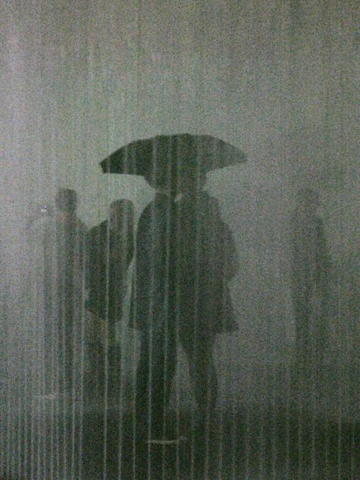rainyday1