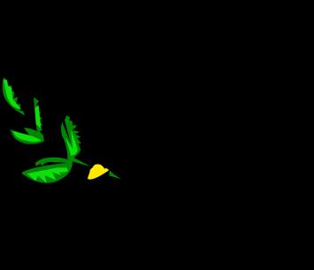 white-dove-159498_960_720
